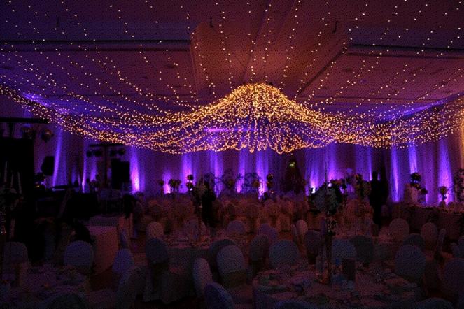 Fairy Lights_1